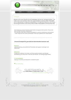 Screenshot Custom Kola Webdesign 2