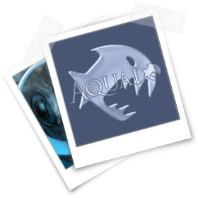 Aqualo - Der Aquaristik Shop